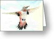 Wildlife Art Ceramics Greeting Cards - Rufous Hunmmingbird Greeting Card by Dy Witt
