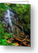 Nantahala Forest Greeting Cards - Rufus Morgan Falls Greeting Card by Debra and Dave Vanderlaan