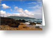 Sly Greeting Cards - Rugged Shore Line Greeting Card by Yali Shi