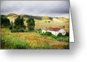 Moisture Greeting Cards - Ruin in Countryside Greeting Card by Carlos Caetano
