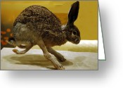 National Museum Of America History Greeting Cards - Run Jack Rabbit Run Greeting Card by LeeAnn McLaneGoetz McLaneGoetzStudioLLCcom