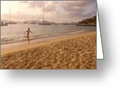 Teenage Greeting Cards - Running Along The Beach At Sunset Greeting Card by Michael S. Lewis