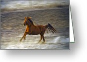 Horse Greeting Cards Greeting Cards - Running Horse Greeting Card by James Steele
