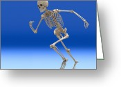 Sprinting Greeting Cards - Running Skeleton, Artwork Greeting Card by Roger Harris
