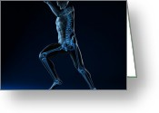 Sprinting Greeting Cards - Running Skeleton, Artwork Greeting Card by Sciepro