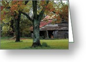 Yellow And Red Greeting Cards - Rural Barn Fall South Carolina Landscape Greeting Card by Kathy Fornal