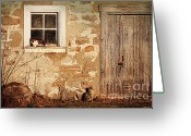 Farming Greeting Cards - Rural barn with cats laying in the sun  Greeting Card by Sandra Cunningham
