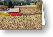 Agriculture Greeting Cards - Rural Color Greeting Card by Mike  Dawson