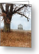 Vintage House Greeting Cards - Rural Farmhouse and Large Tree Greeting Card by Jill Battaglia