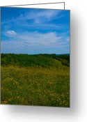 West Virginia Greeting Cards - Rural Parkersburg Greeting Card by Road  Mosey