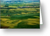 Wheatfields Photo Greeting Cards - Rural Tapestry Greeting Card by Mike  Dawson