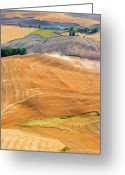 Dust Greeting Cards - Rural Traffic Greeting Card by Mike  Dawson