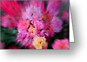 Bud Greeting Cards - Rush of Colour Greeting Card by Sonja Bonitto