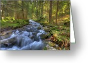 Sean Allen Greeting Cards - Rushing Mountain Stream Greeting Card by Sean Allen