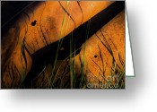 Arne J Hansen Greeting Cards - Rusted Greeting Card by Arne Hansen