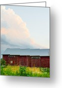 Up On The Roof Greeting Cards - Rustic Barn Greeting Card by Christina Klausen