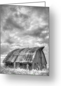 Black And White Barn Greeting Cards - Rustic Barn Greeting Card by Jane Linders