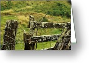 Barbed Wire Fences Photo Greeting Cards - Rustic Fence Greeting Card by Marilyn Wilson