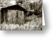 Gass Greeting Cards - Rustic Shed Greeting Card by Perry Webster