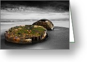 Seaview Greeting Cards - Rusty parts of ship Greeting Card by Svetlana Sewell