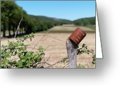Fence Greeting Cards - Rusty Tin Can Laid On Fence And Fields Greeting Card by Gil Guelfucci