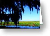 Cameron Greeting Cards - Sabine National Wildlife Refuge Greeting Card by Thomas R Fletcher