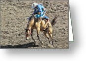 Ron Roberts Photography Framed Prints Greeting Cards - Saddle Back Bronc Riding Greeting Card by Ron Roberts