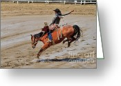 Infield Greeting Cards - Saddle bronc riding at the Calgary Stampede Greeting Card by Louise Heusinkveld