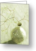 Chic Greeting Cards - Sage  Greeting Card by Linde Townsend