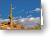 Cacti Greeting Cards - Saguaro cactus - Symbol of the American West Greeting Card by Christine Till