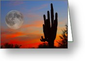 Saguaro Cactus Greeting Cards - Saguaro Full Moon Sunset Greeting Card by James Bo Insogna