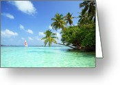Tropical Climate Greeting Cards - Sail Boat, Indian Ocean Greeting Card by Matteo Colombo