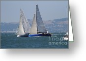White Wing Greeting Cards - Sail Boats on The San Francisco Bay - 7D18323 Greeting Card by Wingsdomain Art and Photography