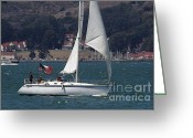 White Wing Greeting Cards - Sail Boats on The San Francisco Bay - 7D18326 Greeting Card by Wingsdomain Art and Photography