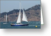 White Wing Greeting Cards - Sail Boats on The San Francisco Bay - 7D18331 Greeting Card by Wingsdomain Art and Photography