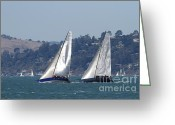 White Wing Greeting Cards - Sail Boats on The San Francisco Bay - 7D18333 Greeting Card by Wingsdomain Art and Photography