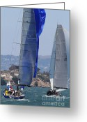 White Wing Greeting Cards - Sail Boats on The San Francisco Bay - 7D18353 Greeting Card by Wingsdomain Art and Photography