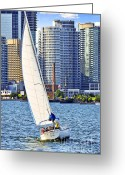 Harbourfront Greeting Cards - Sailboat in Toronto harbor Greeting Card by Elena Elisseeva