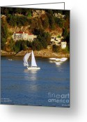 B.c Greeting Cards - Sailboat in Vancouver Greeting Card by Robert Meanor