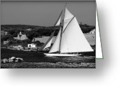 Sailing Fast Greeting Cards - Sailboat  Greeting Card by Pedro Cardona
