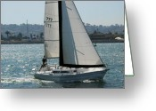 Sailboat Greeting Cards - Sailboats 9 Greeting Card by Joseph R Luciano