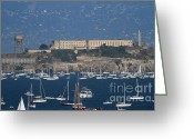 Alcatraz Light House Greeting Cards - Sailboats In The San Francisco Bay Overlooking Alcatraz . 7D8080 Greeting Card by Wingsdomain Art and Photography