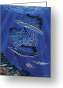 Black Bart Greeting Cards - Sailfish round up Greeting Card by Carey Chen