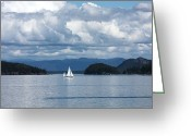 Men Greeting Cards - Sailing in the San Juans Greeting Card by Carol Groenen