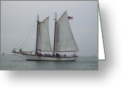 N Taylor Greeting Cards - Sailing Key West  Greeting Card by N Taylor