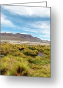 Region Greeting Cards - Salar De Aguas Calientes Greeting Card by Sofía Caro F.
