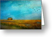 Barn Mixed Media Greeting Cards - Salt Marsh Greeting Card by Michael Petrizzo