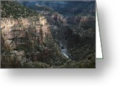 Canyon Walls Greeting Cards - Salt River Canyon Greeting Card by Dave Dilli