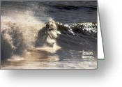 Bruster Greeting Cards - Salt Spray Surfing Greeting Card by Clayton Bruster