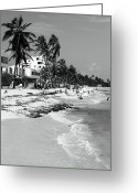 Poster Prints Greeting Cards - San Andres Island Beach View Greeting Card by John Rizzuto